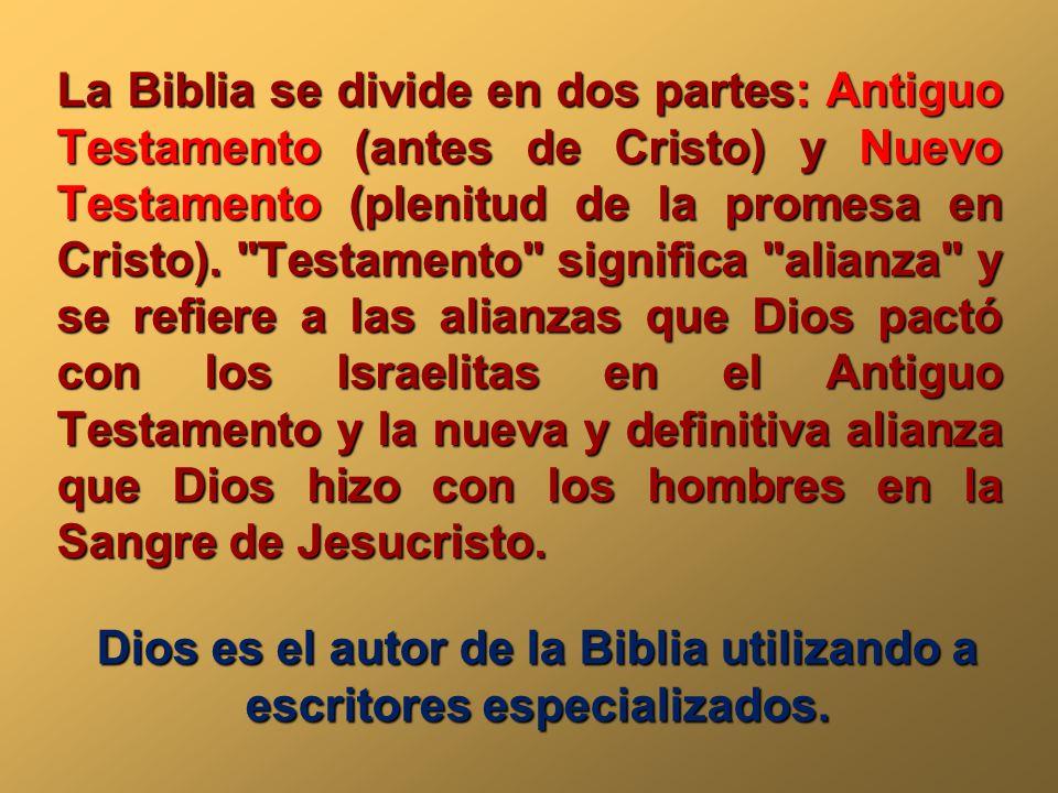 La palabra biblia viene del griego y significa libros for Que significa cocina de autor