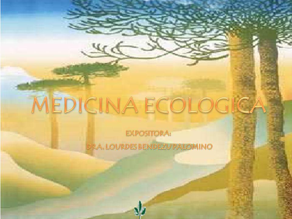 DRA. LOURDES BENDEZU PALOMINO
