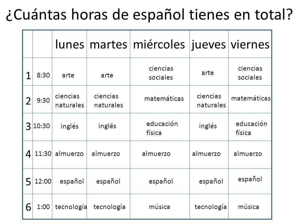 ¿Cuántas horas de español tienes en total