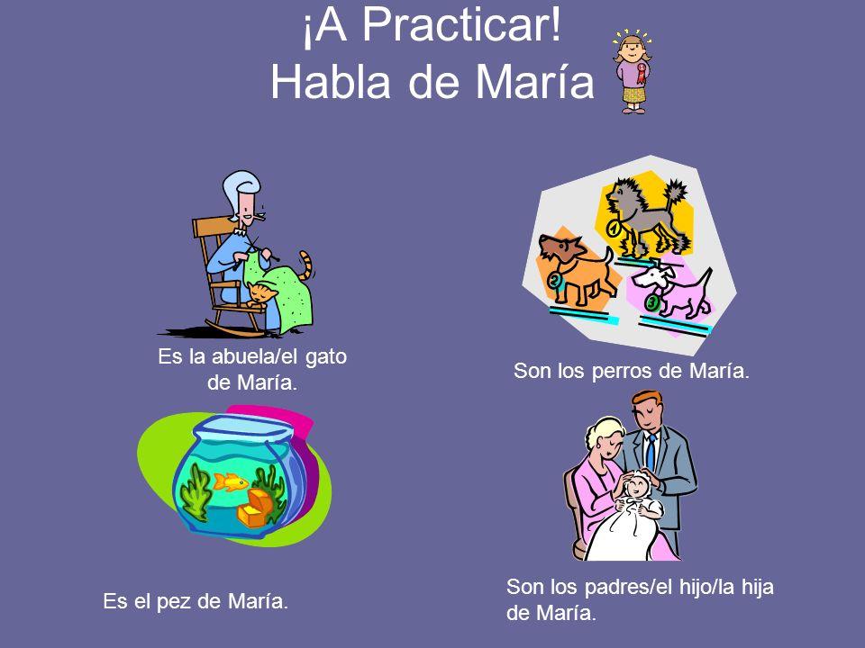 ¡A Practicar! Habla de María