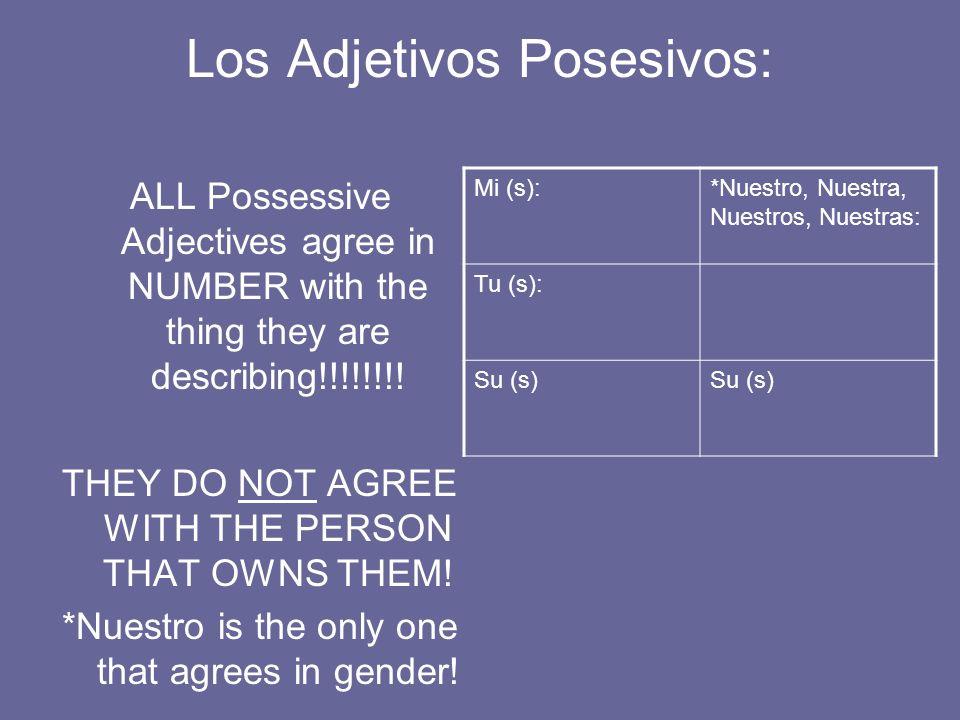 Los Adjetivos Posesivos:
