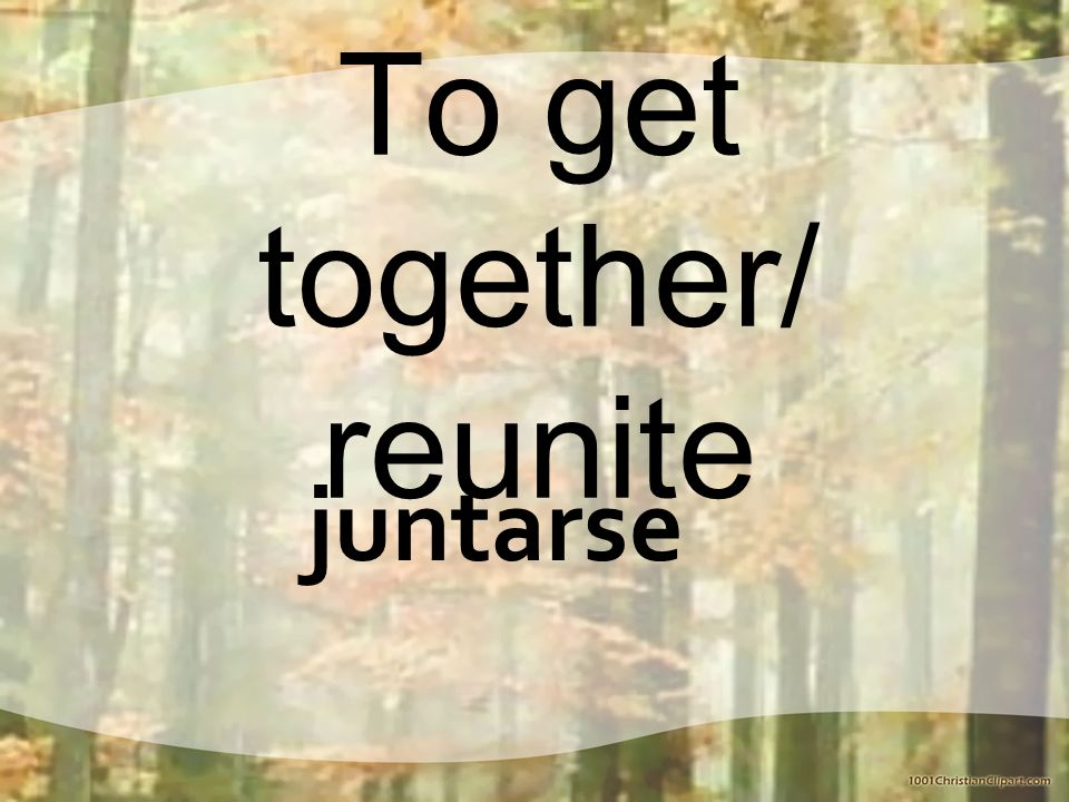 To get together/ reunite