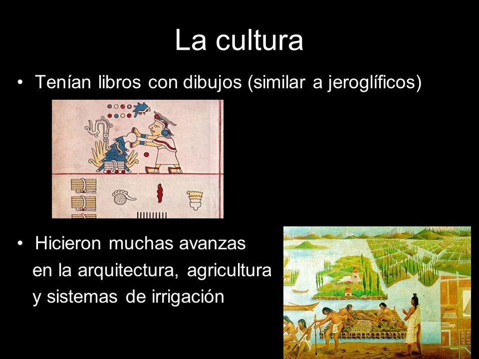 La cultura Tenían libros con dibujos (similar a jeroglíficos)