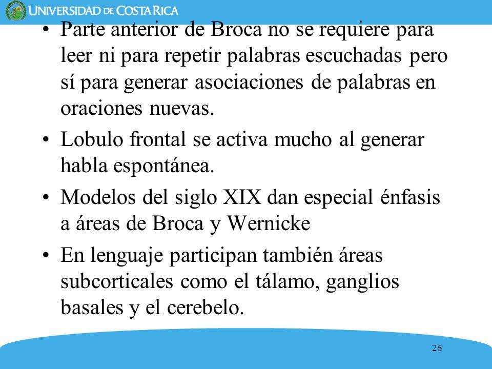 Parte anterior de Broca no se requiere para leer ni para repetir palabras escuchadas pero sí para generar asociaciones de palabras en oraciones nuevas.