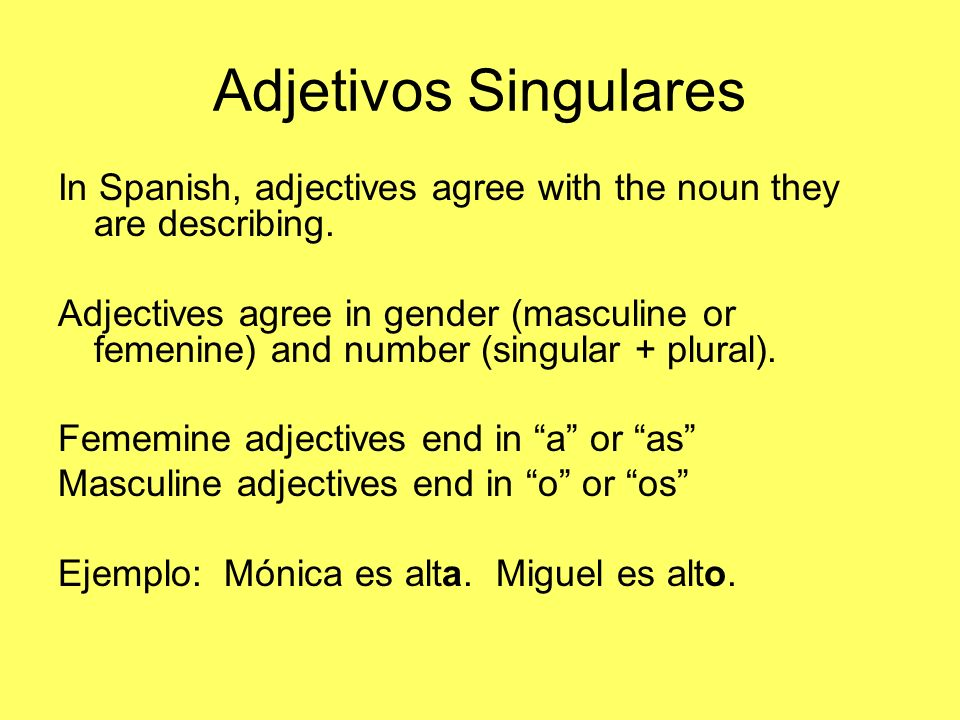 Adjetivos Singulares In Spanish, adjectives agree with the noun they are describing.