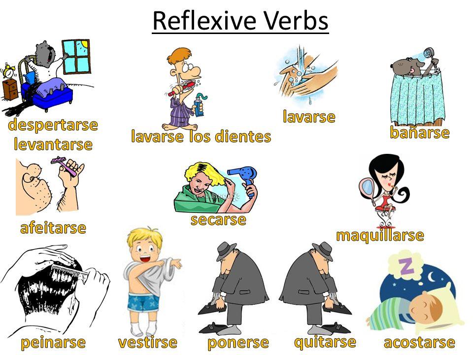 Reflexive Verbs lavarse despertarse bañarse lavarse los dientes