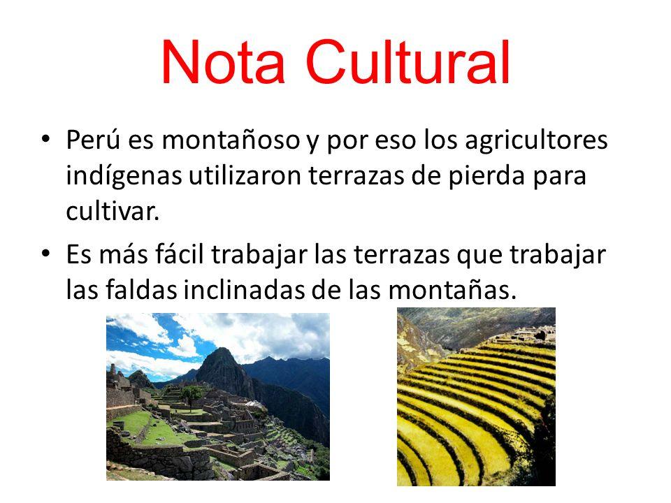 Nota CulturalPerú es montañoso y por eso los agricultores indígenas utilizaron terrazas de pierda para cultivar.
