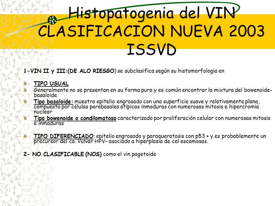 Histopatogenia del VIN CLASIFICACION NUEVA 2003 ISSVD