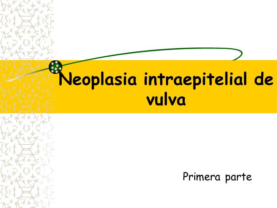 Neoplasia intraepitelial de vulva