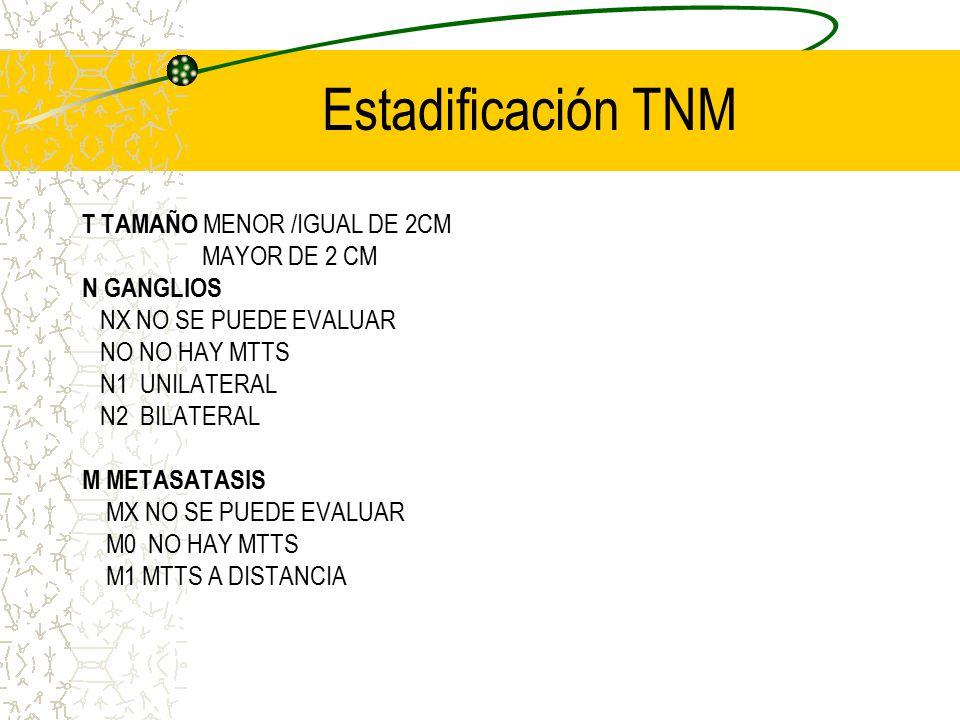 Estadificación TNM T TAMAÑO MENOR /IGUAL DE 2CM MAYOR DE 2 CM