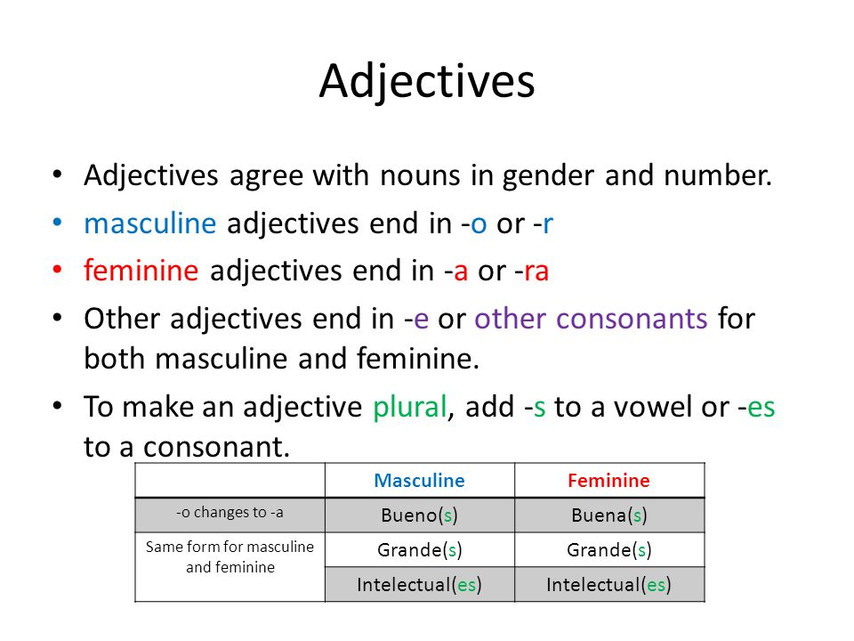 Same form for masculine and feminine