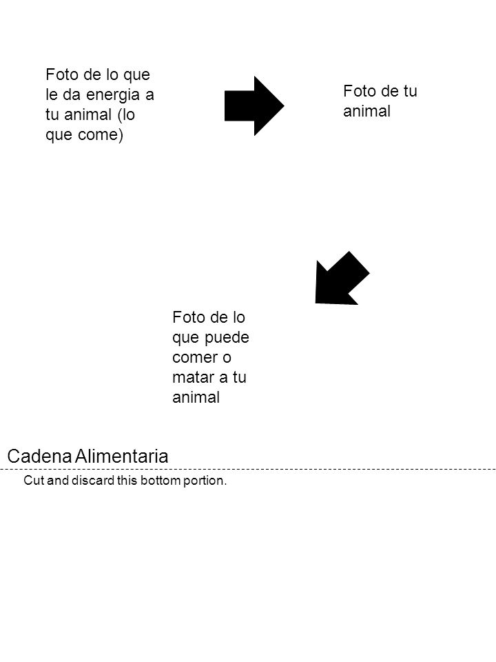 Foto de lo que le da energia a tu animal (lo que come)