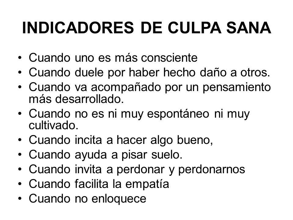 INDICADORES DE CULPA SANA