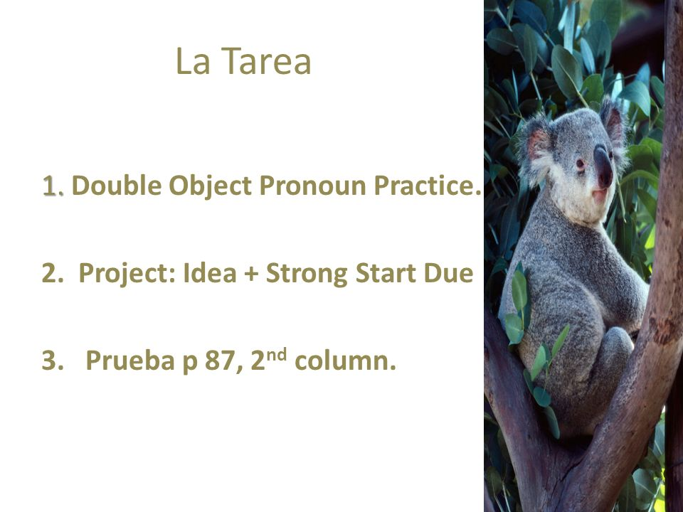 La Tarea 1. Double Object Pronoun Practice.