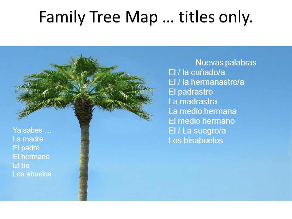 Family Tree Map … titles only.
