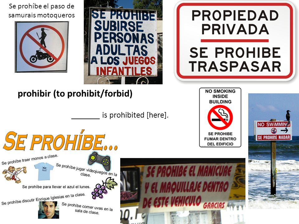 prohibir (to prohibit/forbid)