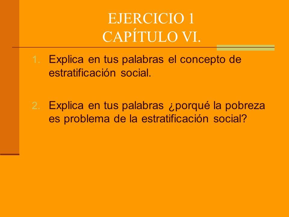 EJERCICIO 1 CAPÍTULO VI. Explica en tus palabras el concepto de estratificación social.
