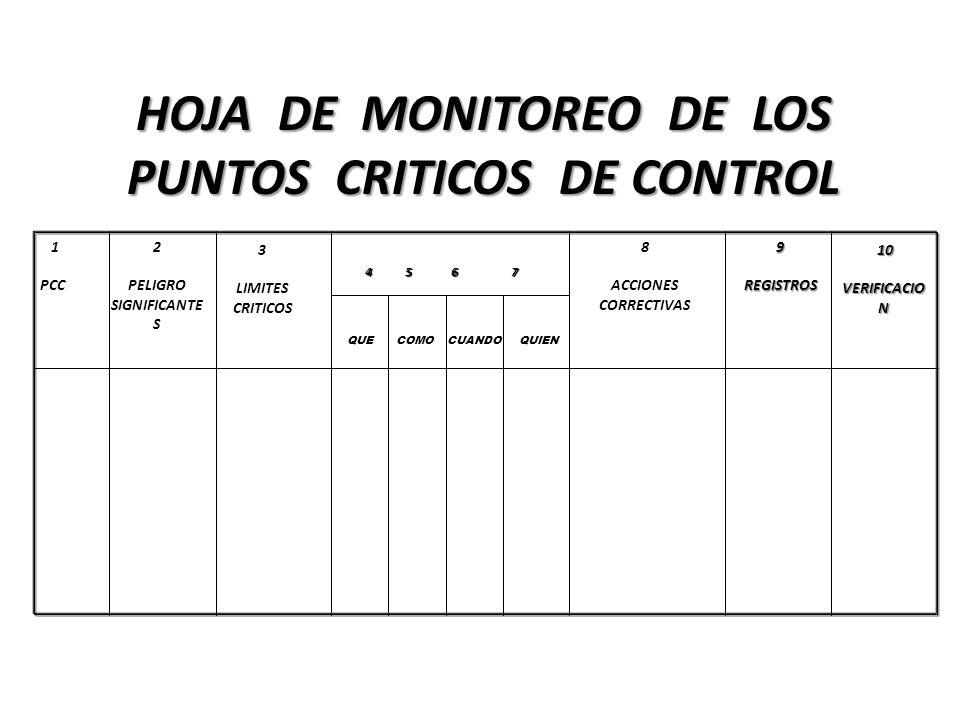 HOJA DE MONITOREO DE LOS PUNTOS CRITICOS DE CONTROL