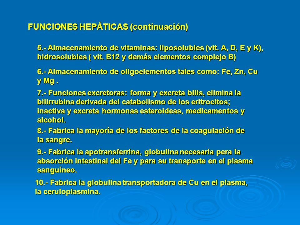 FUNCIONES HEPÁTICAS (continuación)