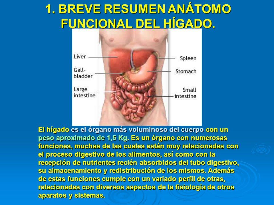 1. BREVE RESUMEN ANÁTOMO FUNCIONAL DEL HÍGADO.