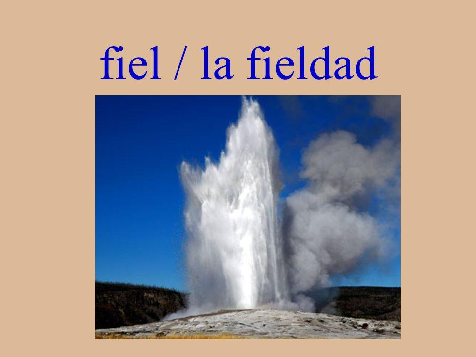 fiel / la fieldad