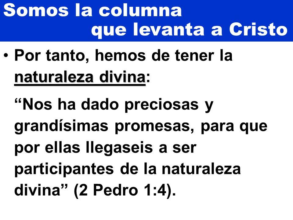 Somos la columna que levanta a Cristo