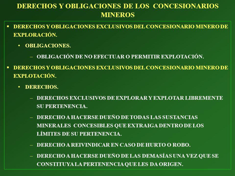 DERECHOS Y OBLIGACIONES DE LOS CONCESIONARIOS MINEROS