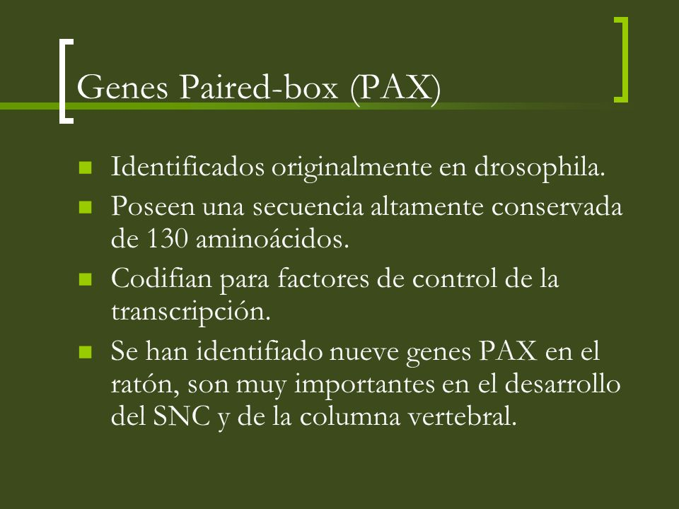 Genes Paired-box (PAX)