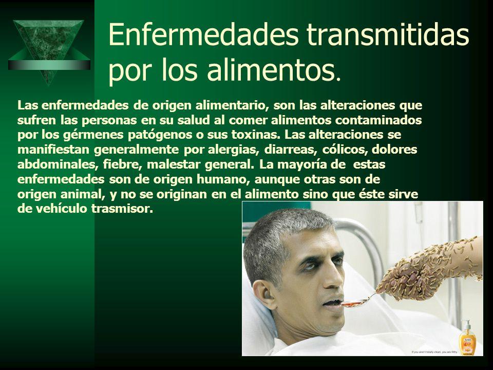 Enfermedades transmitidas por los alimentos.