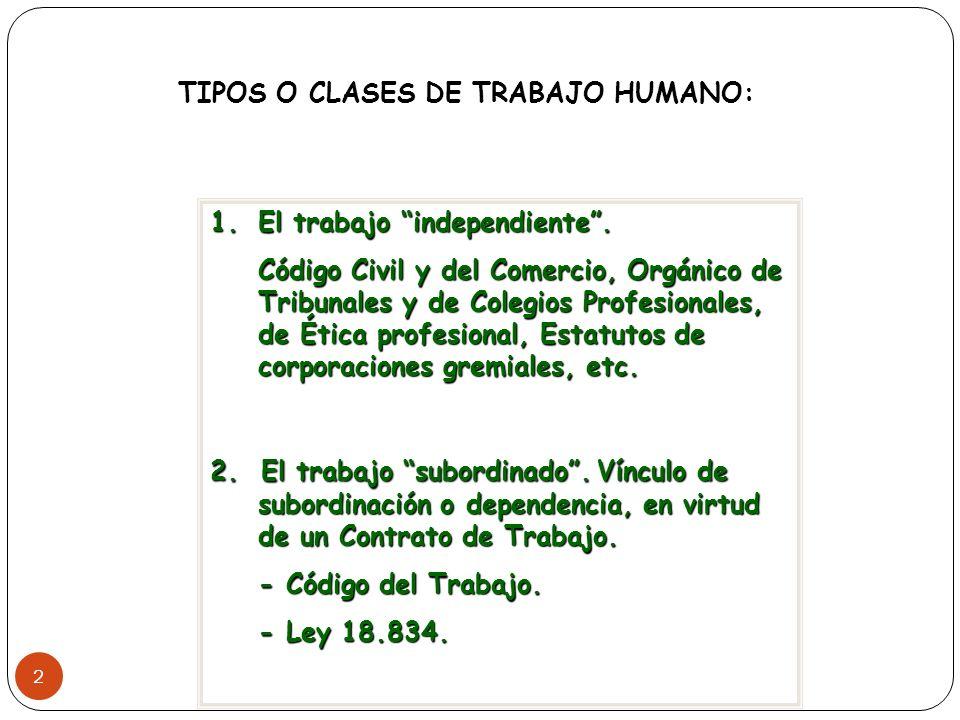 TIPOS O CLASES DE TRABAJO HUMANO: