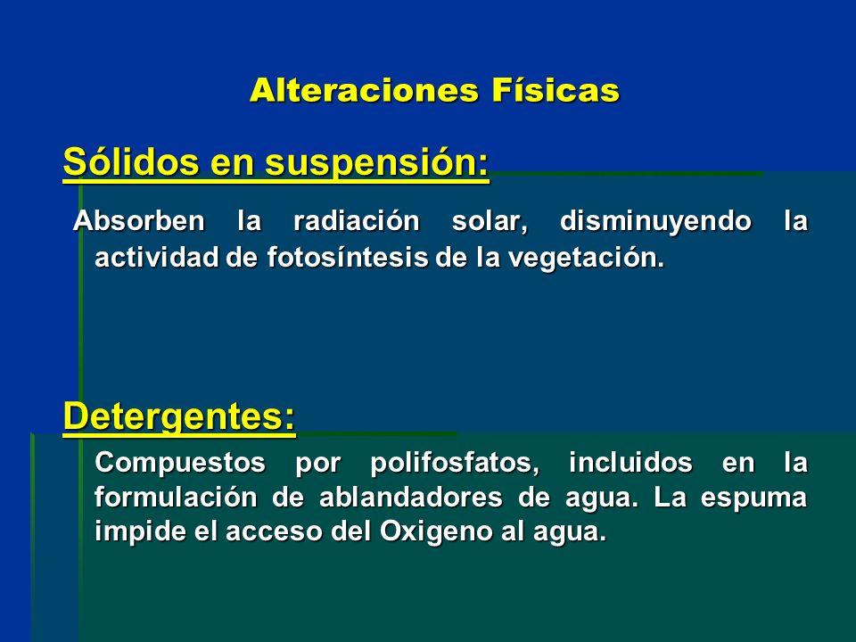 Sólidos en suspensión: