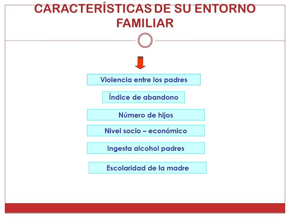 CARACTERÍSTICAS DE SU ENTORNO FAMILIAR