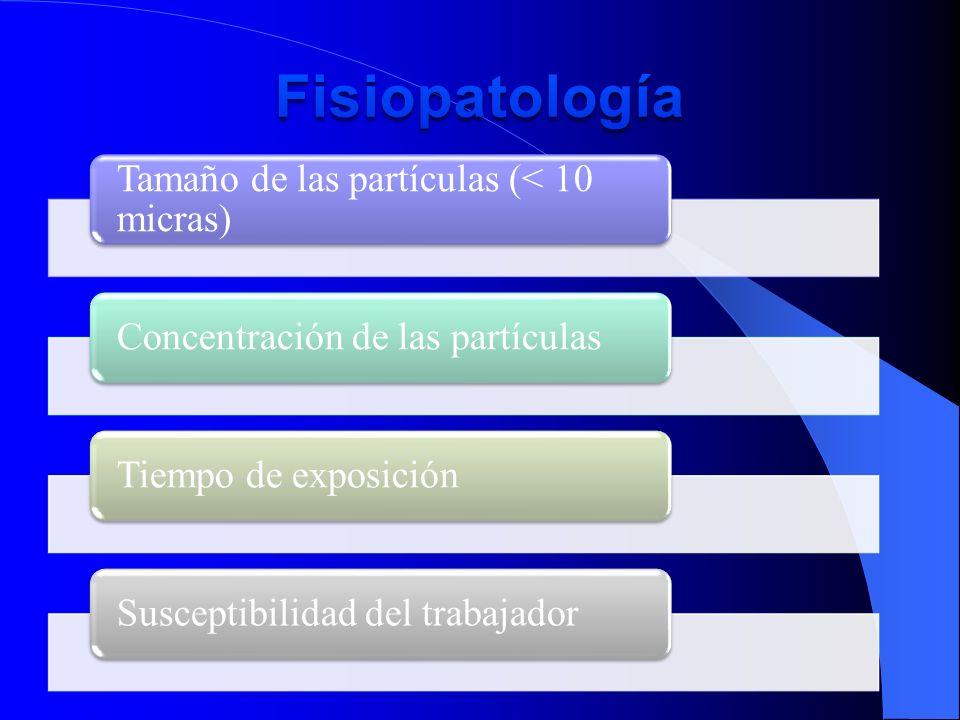 Fisiopatología Tamaño de las partículas (< 10 micras)