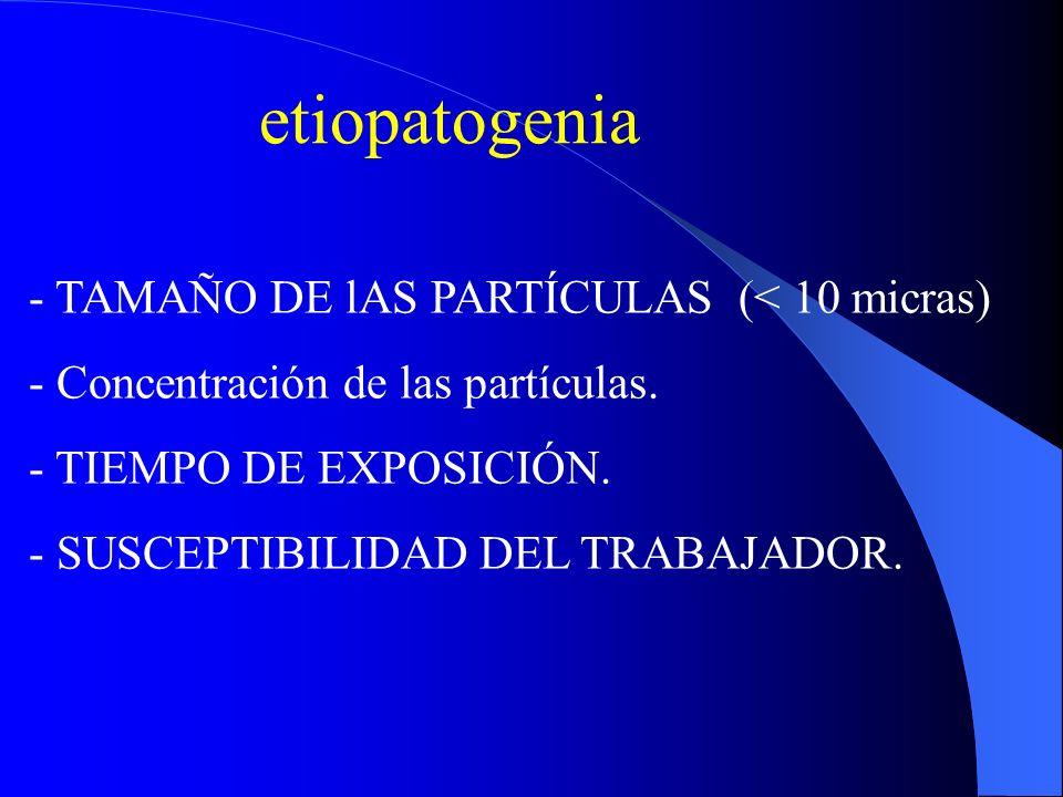 etiopatogenia TAMAÑO DE lAS PARTÍCULAS (< 10 micras)