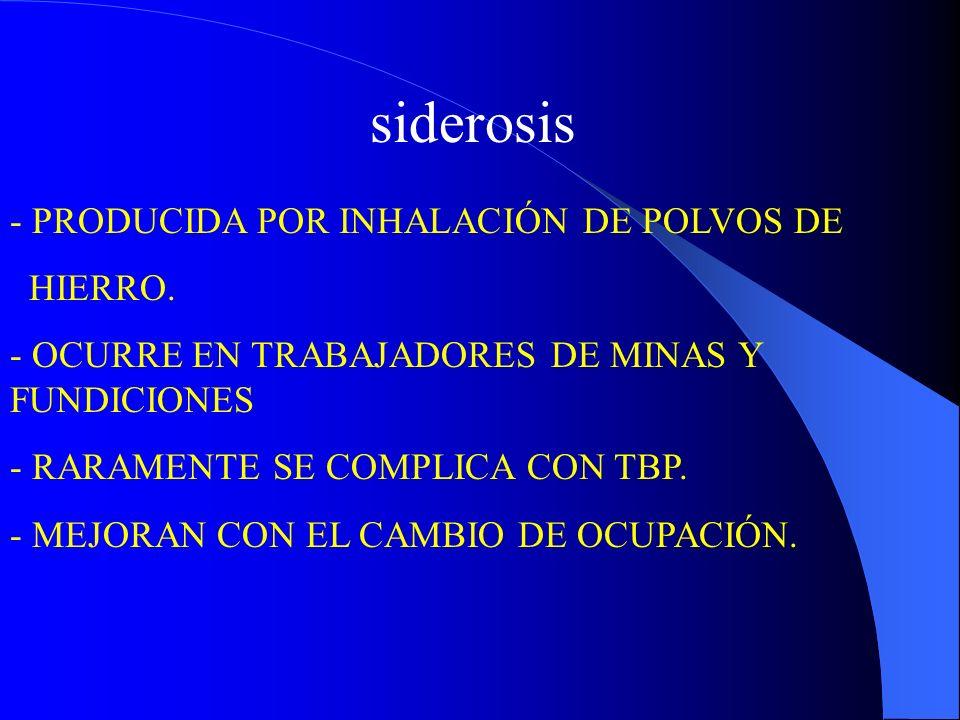 siderosis - PRODUCIDA POR INHALACIÓN DE POLVOS DE HIERRO.