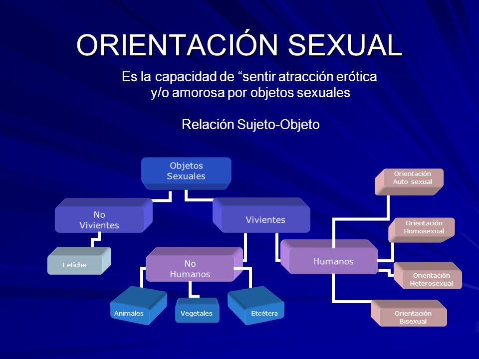 ORIENTACIÓN SEXUAL Es la capacidad de sentir atracción erótica