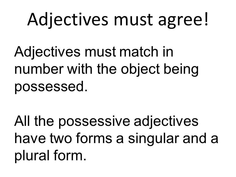 Adjectives must agree!Adjectives must match in number with the object being possessed.