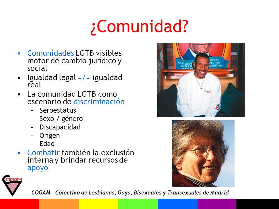 ¿Comunidad Comunidades LGTB visibles motor de cambio jurídico y social. Igualdad legal =/= igualdad real.
