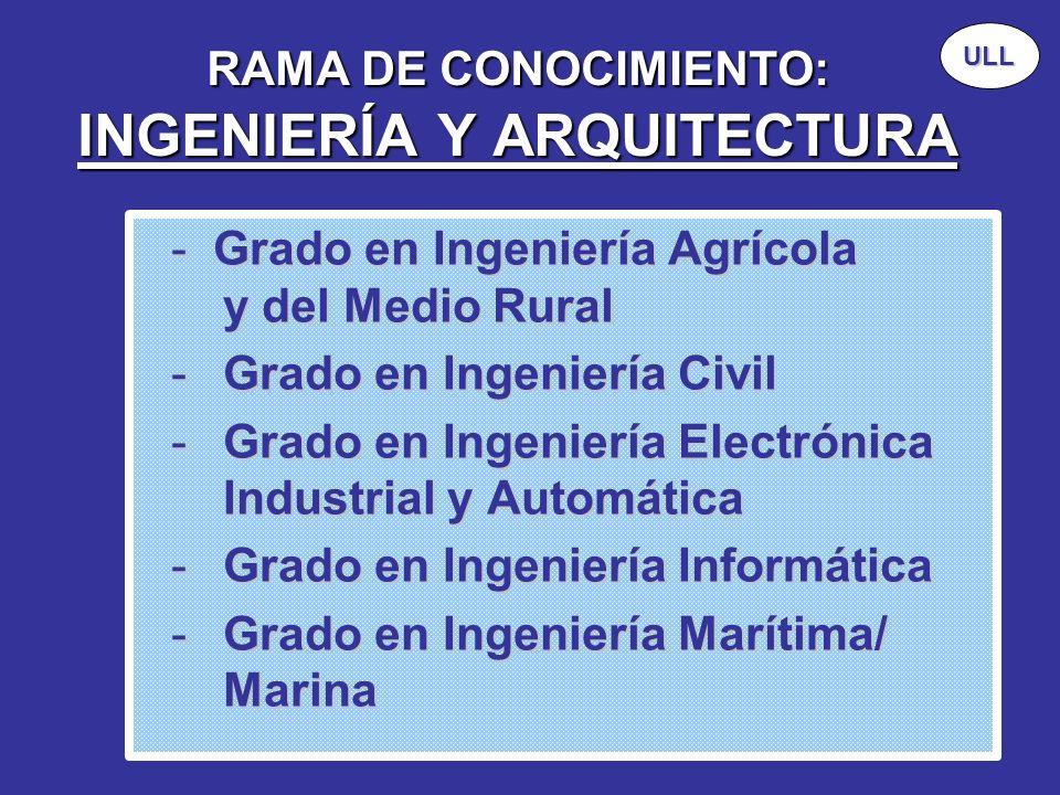 RAMA DE CONOCIMIENTO: INGENIERÍA Y ARQUITECTURA