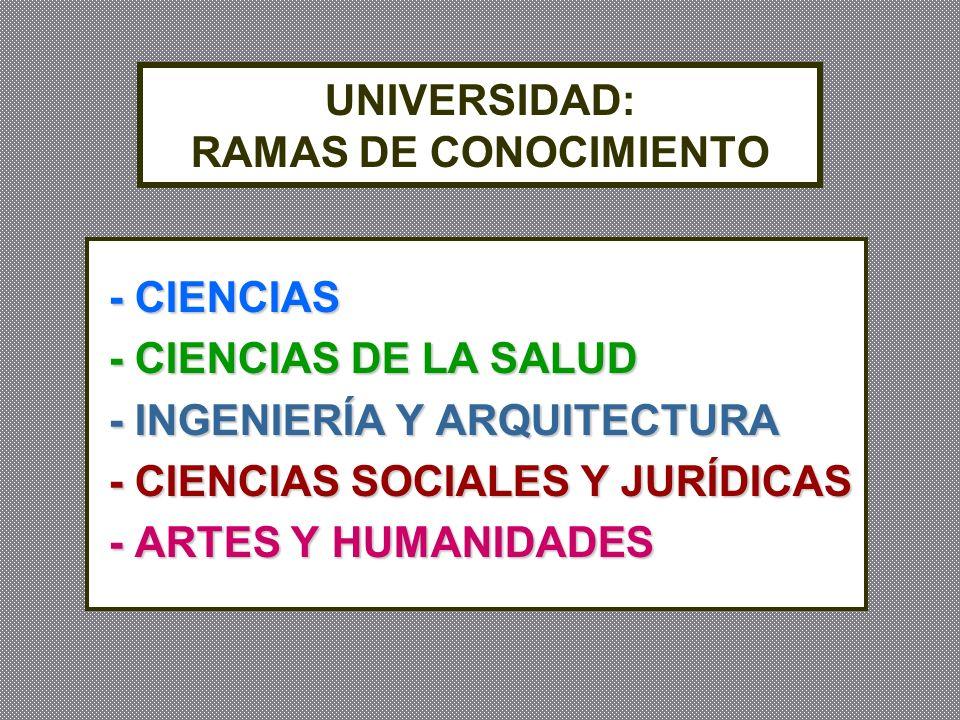 UNIVERSIDAD: RAMAS DE CONOCIMIENTO