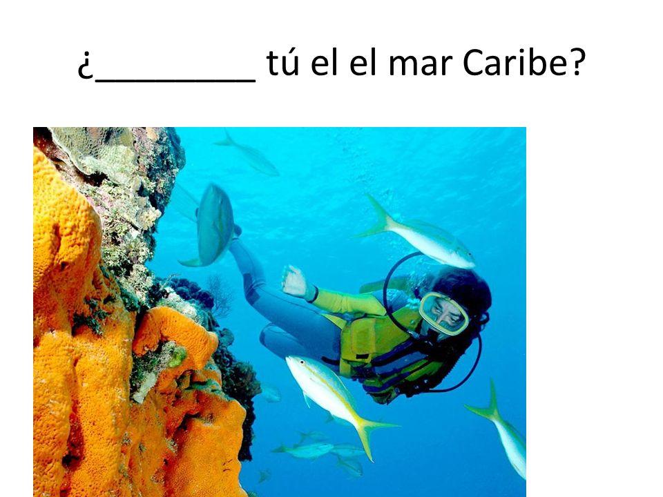 ¿________ tú el el mar Caribe