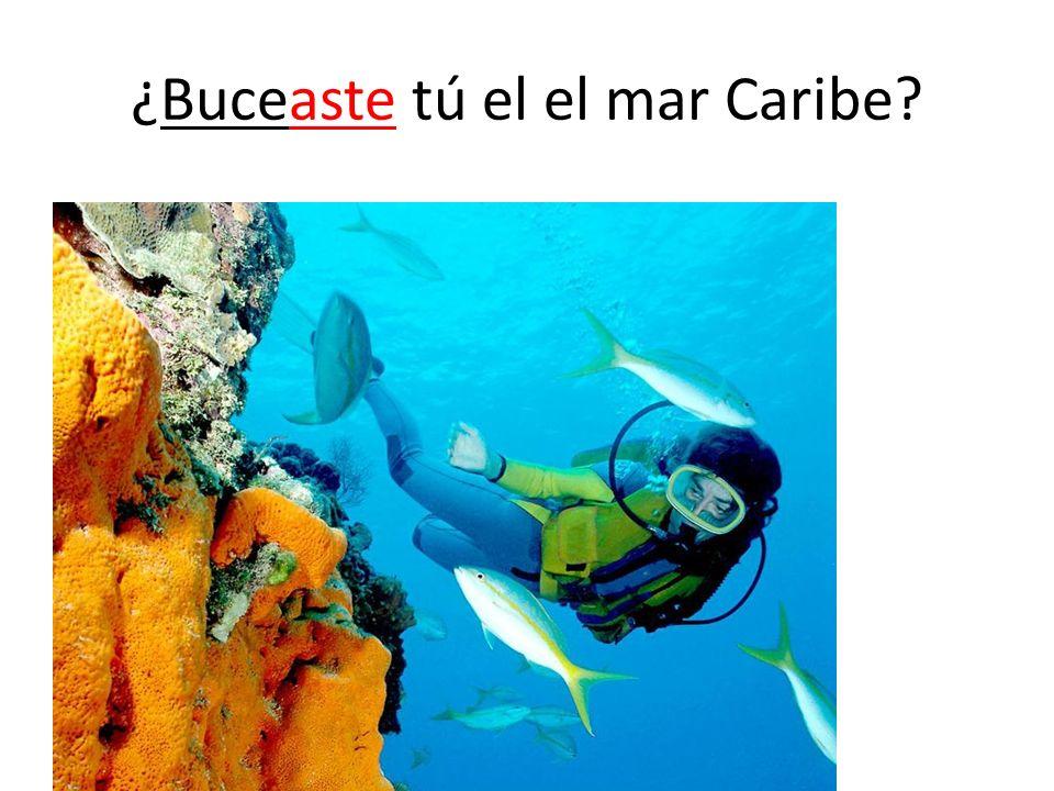 ¿Buceaste tú el el mar Caribe