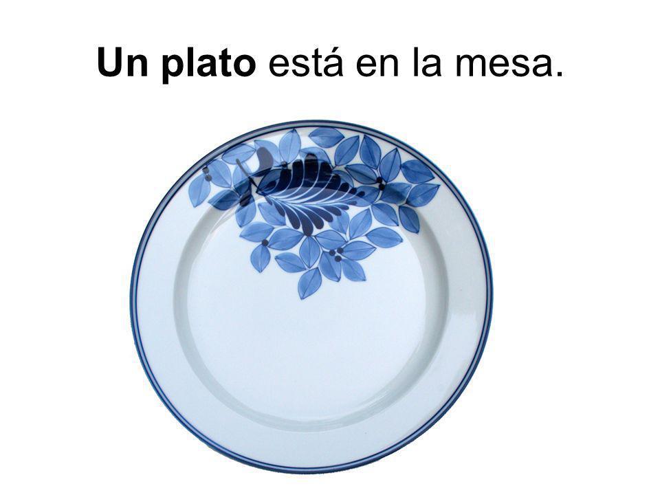 Un plato está en la mesa.