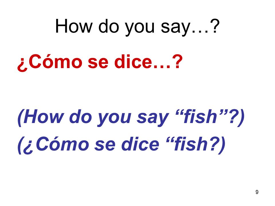 How do you say… ¿Cómo se dice… (How do you say fish ) (¿Cómo se dice fish )