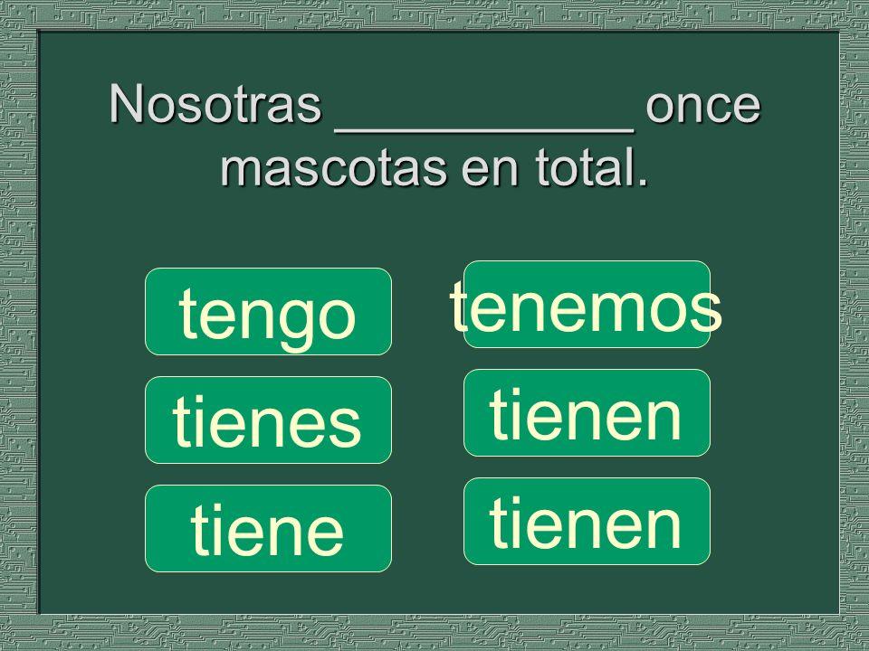 Nosotras __________ once mascotas en total.