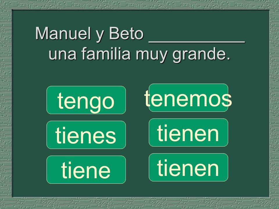Manuel y Beto __________ una familia muy grande.