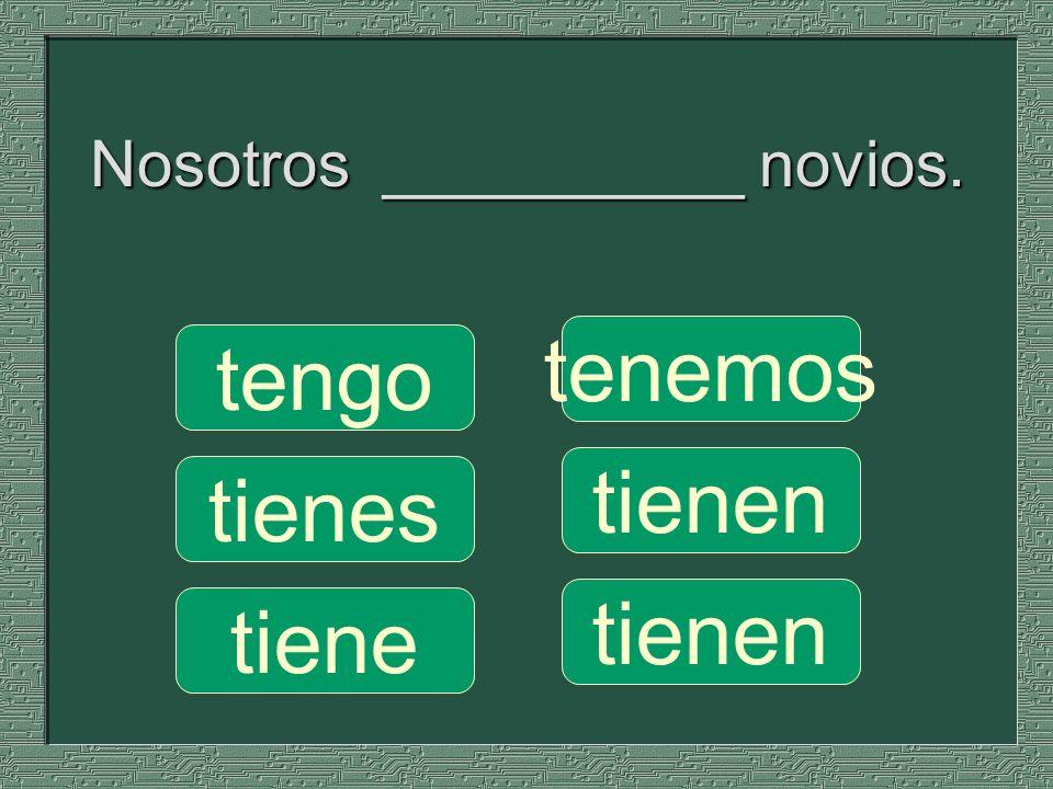 Nosotros __________ novios.