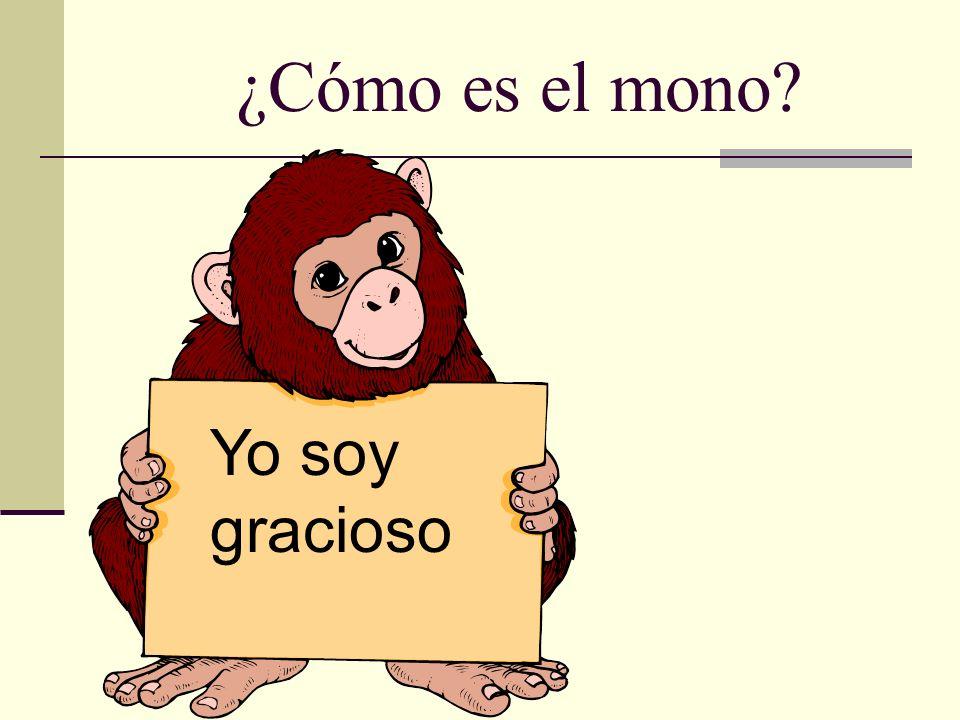 ¿Cómo es el mono Yo soy gracioso