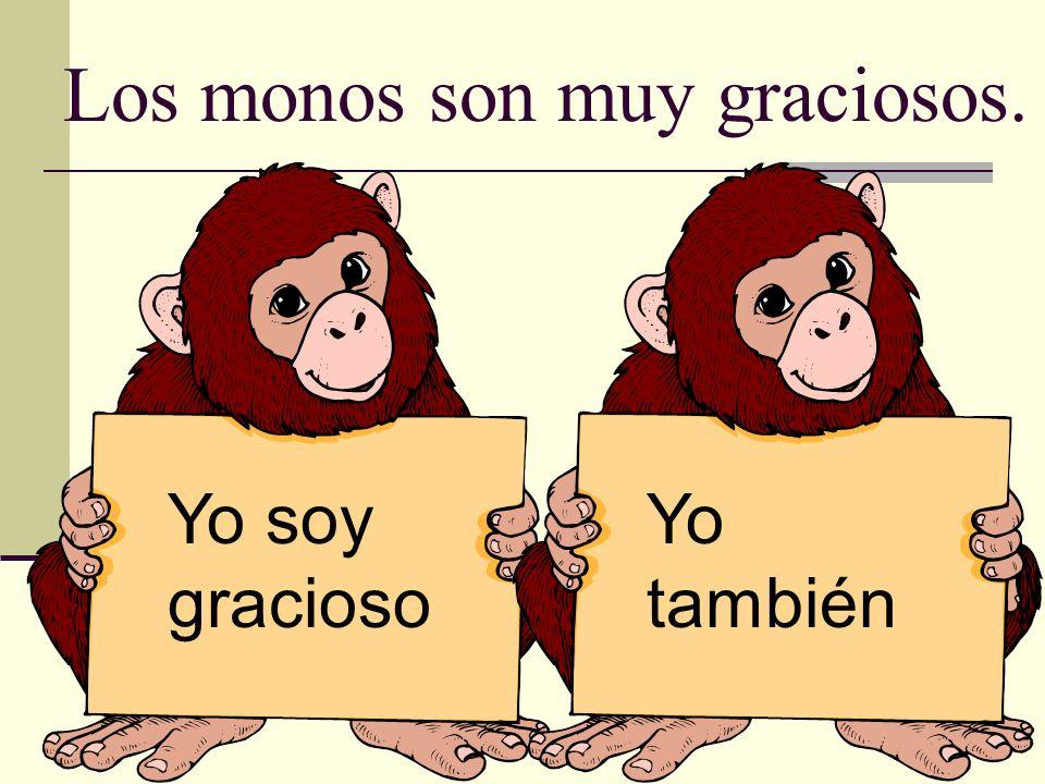 Los monos son muy graciosos.