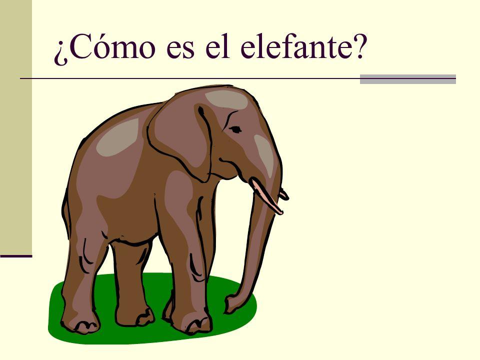 ¿Cómo es el elefante